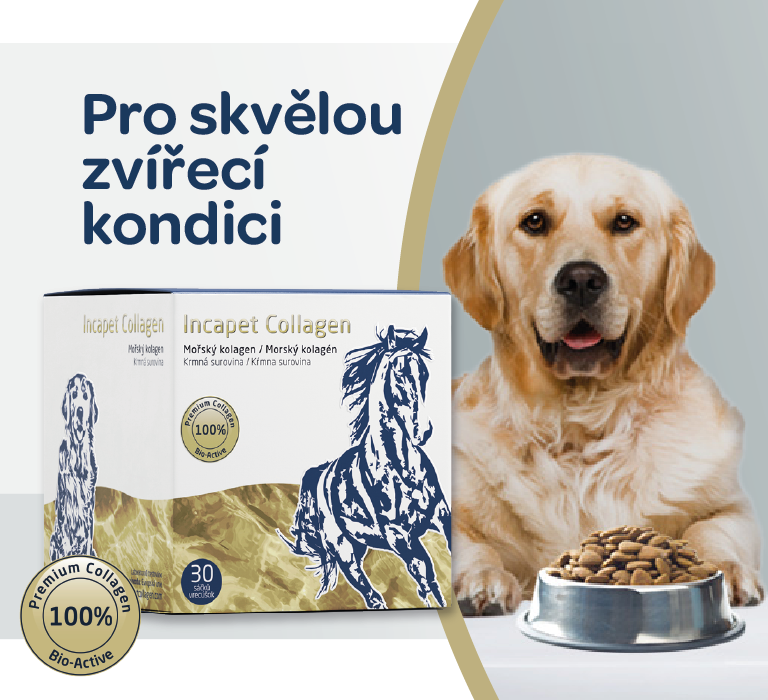 Incapet collagen